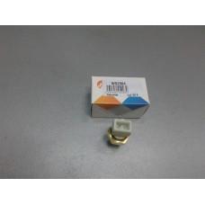 Датчик охлаждающей жидкости (пр-во VERNET) Renault Kangoo, Megane ||, Laguna, 21
