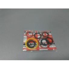 Ремкомплект сальников маслонасосо (ARI-IS) FORD TRANSIT 2.5D, 2.5TDI