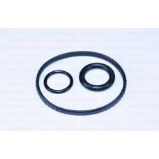 Уплотнительные кольца теплообменника Kangoo II K9K 08- (к-кт)